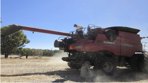 integrated harrington seed destructor