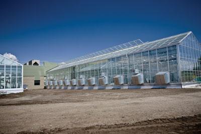 WTCM-28-7--Bayer-Saskatoon-green008