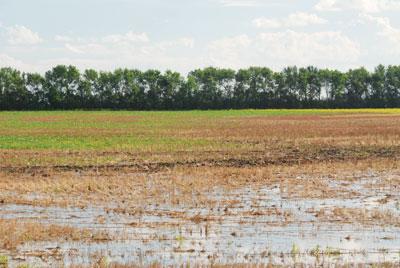 WTCM16.17-2011-floods