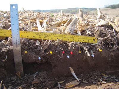 WTCM20.10-soil-dist
