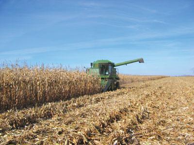 wtcm-13-23--corn-harvest-img_1401