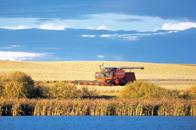 wtcm-17-2--harvest1