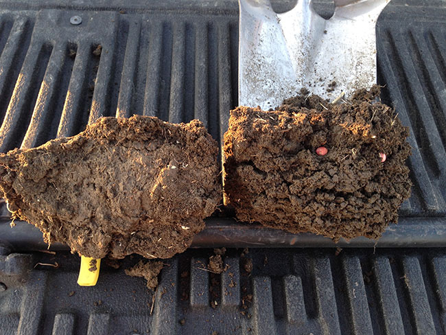 Controlling traffic to boost soil health
